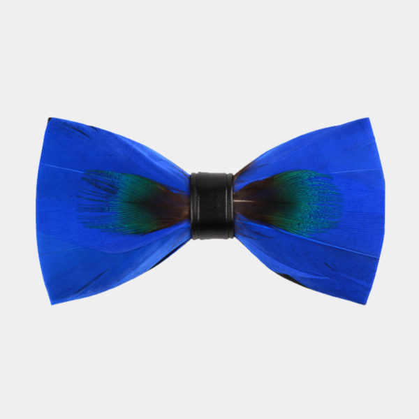Royal Blue Peacock Feather bow Tie from Gentlemansguru.com